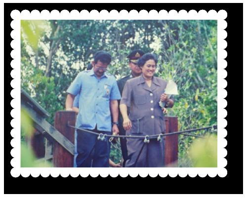 2543-pikulthong